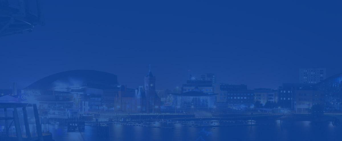 Cardiff SEO 1